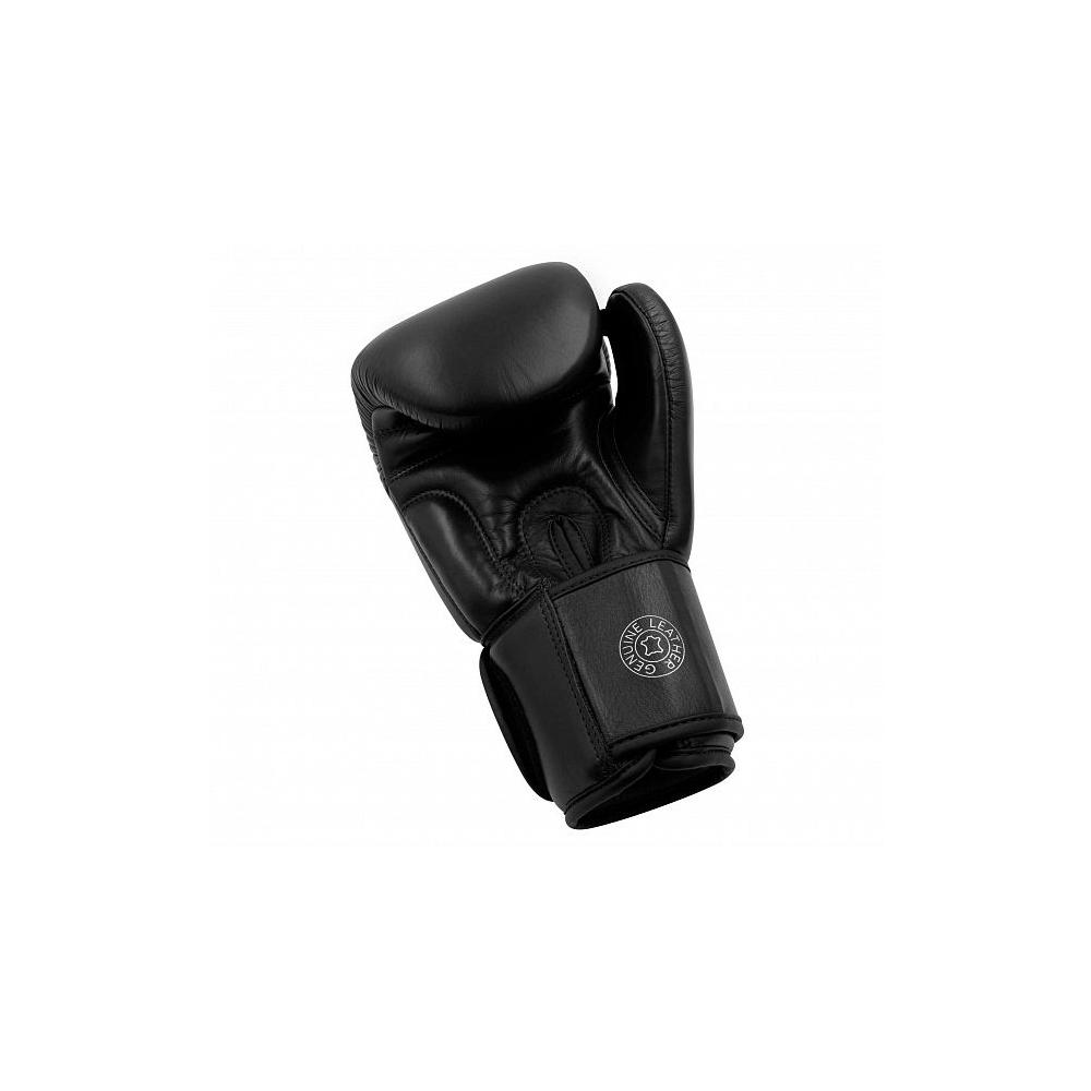 Muay Thai Gloves 200