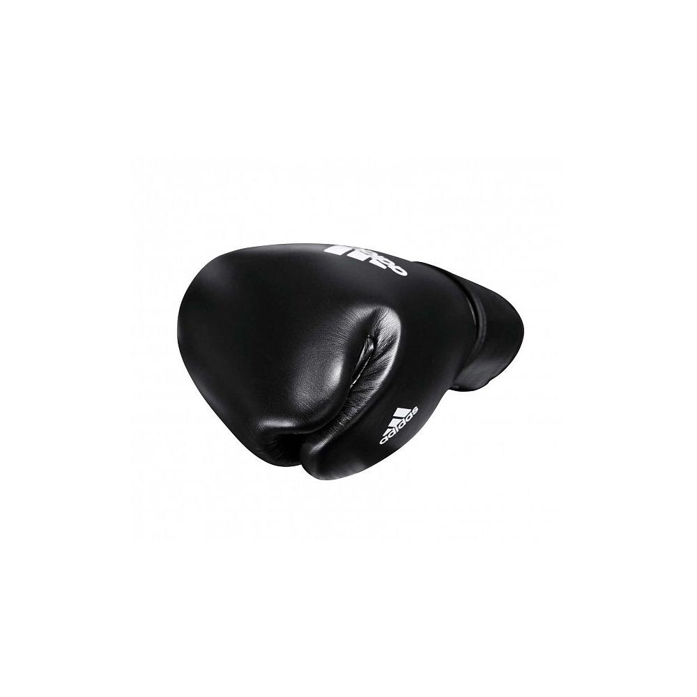 Muay Thai Gloves 300